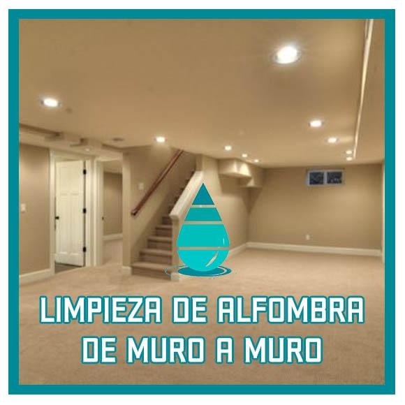 Limpieza de piso alfombrado