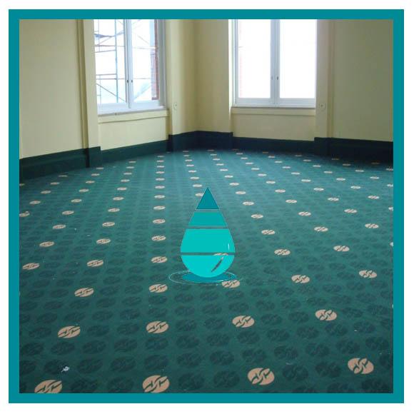 Limpieza piso alfombrado